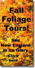 New England Fall Foliage Tours!