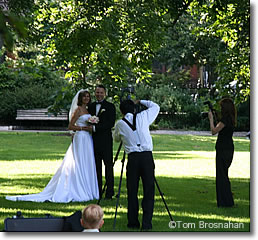 Newlyweds, Public Garden, Boston MA