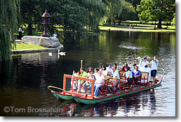 Swan Boat in the Public Garden, Boston MA