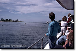Whale watch cruise, Gloucester MA