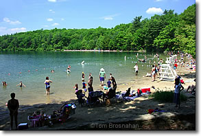 Swimming at Walden Pond, Concord MA