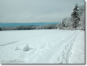 Winter at Walden Pond, Concord, Massachusetts