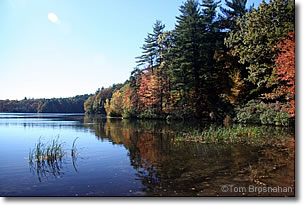 Thoreau's Cove at Walden Pond, Concord, Massachusetts