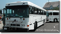 VTA Buses, Martha's Vineyard MA