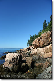 Bass Point Rocks, Mount Desert Island ME