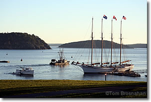 Boats in Penobscot Bay, Maine