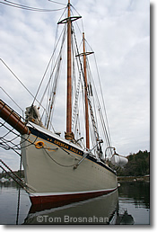 Maine Windjammer