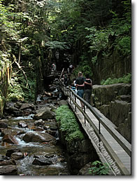 The Flume, Franconia Notch State Park, New Hampshire
