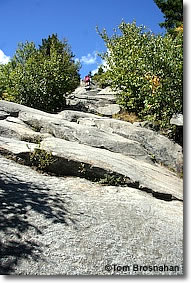Mt Monadnock Trail, NH