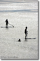 Paddleboarders at a beach in Newport RI