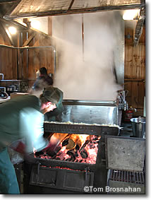 Maple Sugar Vat, Vermont