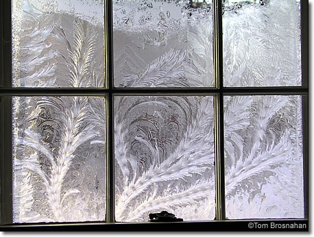 Frost Feathers Concord Massachusetts